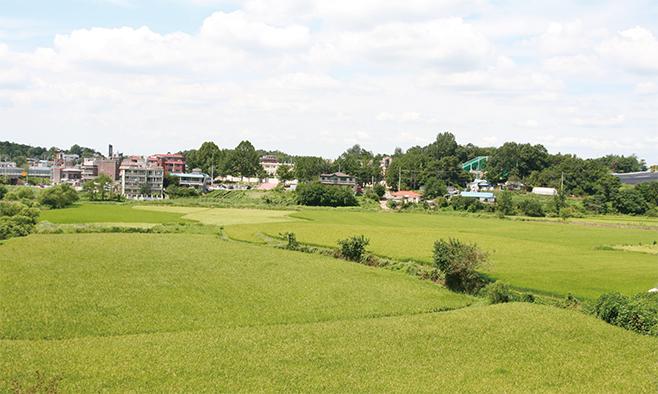 현곡리 청북초등학교 주변(2013)