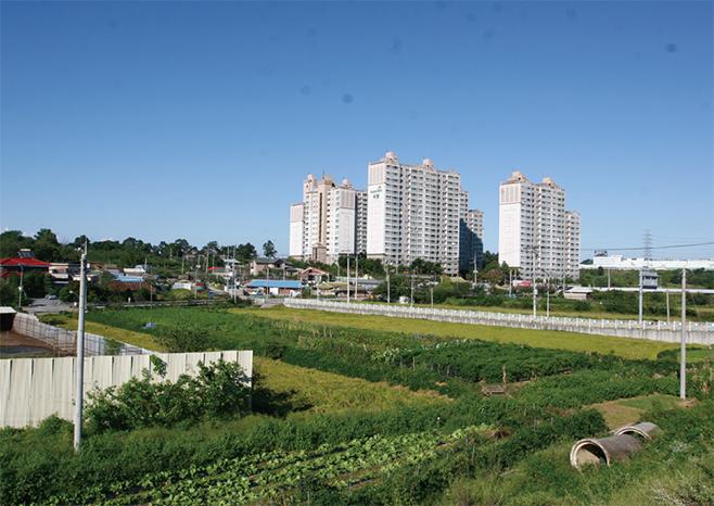 칠구쟁이 마을로 친숙한 칠괴동(2011)